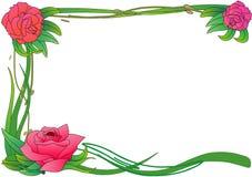 Frontera de Rose ilustración del vector