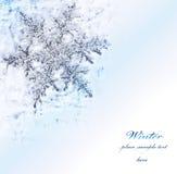 Frontera decorativa azul del copo de nieve Imágenes de archivo libres de regalías