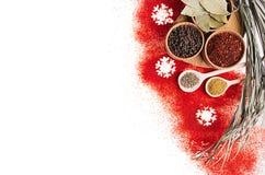 Frontera decorativa de la comida de la Navidad del polvo de la pimienta de chile rojo y del condimento seco en cuencos de madera Fotos de archivo