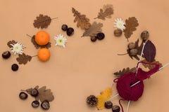 Frontera decorativa del otoño con las castañas, las nueces, y las hojas Fotografía de archivo