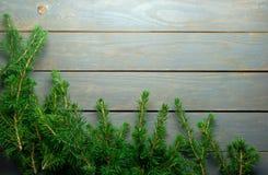 Frontera del árbol de abeto de la Navidad Imagenes de archivo