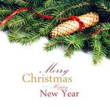 Frontera del árbol de abeto de la Navidad con la decoración de la Navidad aislada encendido Imagenes de archivo