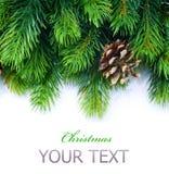 Frontera del árbol de navidad Fotografía de archivo
