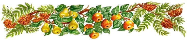Frontera del diseño de la fruta stock de ilustración