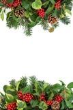 Frontera del invierno con acebo y la flora Fotos de archivo libres de regalías