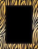 Frontera del leopardo/del tigre Fotos de archivo libres de regalías