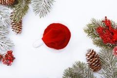 Frontera del marco de la Navidad en blanco, ramas, conos y bayas rojas Fotos de archivo libres de regalías
