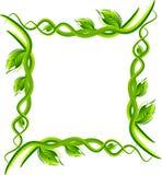 Frontera del marco de las hojas Imagenes de archivo