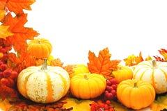 Frontera del otoño Imagenes de archivo
