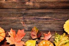 Frontera del otoño con las hojas y las calabazas caidas Fotografía de archivo