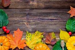 Frontera del otoño con las hojas y las calabazas caidas Foto de archivo