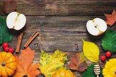 Frontera del otoño con las hojas y las calabazas caidas Fotografía de archivo libre de regalías