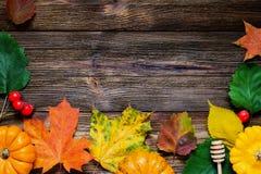 Frontera del otoño con las hojas y las calabazas caidas Imagen de archivo