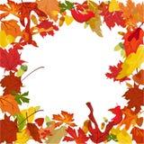 Frontera del otoño del vector Fotografía de archivo