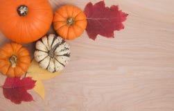 Frontera del otoño en la madera Foto de archivo libre de regalías