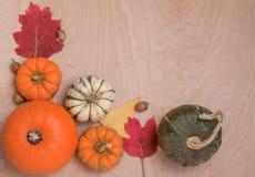 Frontera del otoño en la madera Imagen de archivo libre de regalías