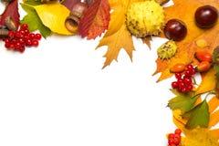 Frontera del otoño Fotos de archivo libres de regalías
