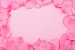 Frontera del pétalo de la flor Fotos de archivo libres de regalías