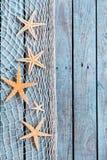 Frontera delicada de la red con las pequeñas estrellas de mar anaranjadas Imágenes de archivo libres de regalías