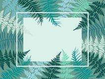 Frontera detallada de las hierbas del helecho Foto de archivo