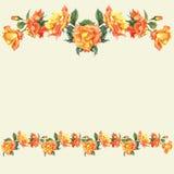 Frontera e ilustraciones de la acuarela con las rosas Fotografía de archivo libre de regalías