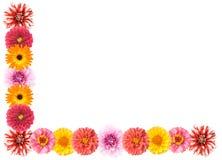 Frontera en ángulo recto de la flor Imágenes de archivo libres de regalías