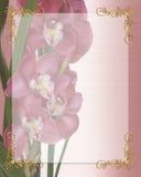 Frontera floral de la invitación del satén de las orquídeas stock de ilustración