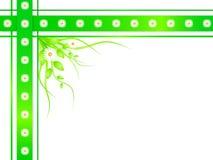 Frontera floral de la manzanilla Imagen de archivo libre de regalías