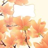 Frontera floral del vector Imagenes de archivo