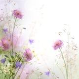 Frontera floral en colores pastel hermosa Fotografía de archivo