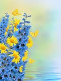 Frontera floral hermosa, diseño floral Fotos de archivo