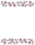 Frontera floral - resorte y verano Foto de archivo libre de regalías