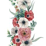 Frontera floral vertical inconsútil de la acuarela Ramo pintado a mano con la anémona roja, blanca, ranúnculo, suculento ilustración del vector