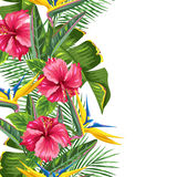 Frontera inconsútil con las hojas y las flores tropicales Ramas de las palmas, flor de la ave del paraíso, hibisco ilustración del vector