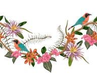 Frontera inconsútil con los pájaros, las plantas y las flores tropicales Flora exótica y fauna stock de ilustración