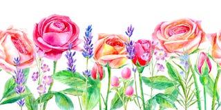 Frontera inconsútil del rosas y lavanda Briar e hierbas stock de ilustración