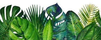Frontera inconsútil del verano del aguazo con las hojas tropicales mezcladas stock de ilustración