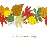Frontera inconsútil con las hojas de otoño y el pájaro lindo w Foto de archivo libre de regalías