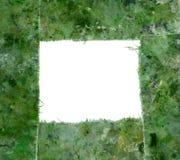 Frontera manchada verde Imagen de archivo libre de regalías