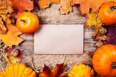 Frontera o marco con las calabazas anaranjadas y colorido de la acción de gracias Imágenes de archivo libres de regalías