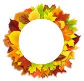 Frontera redonda de las hojas de otoño Fotografía de archivo