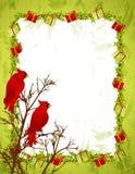 Frontera roja del árbol de los cardenales Foto de archivo