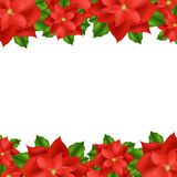 Frontera roja del Poinsettia Imagen de archivo libre de regalías