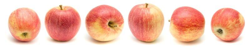 Frontera roja y amarilla de las manzanas Imágenes de archivo libres de regalías