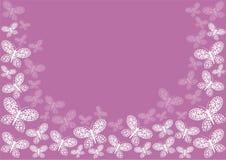 Frontera rosada de la mariposa Fotos de archivo libres de regalías
