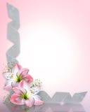 Frontera rosada de las flores del Amaryllis stock de ilustración