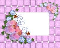 Frontera rosada de las orquídeas Fotos de archivo libres de regalías