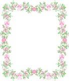 Frontera rosada del capullo de rosa fotografía de archivo libre de regalías