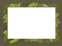 Frontera verde Imágenes de archivo libres de regalías
