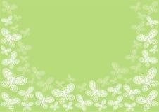 Frontera verde de la mariposa Fotografía de archivo libre de regalías